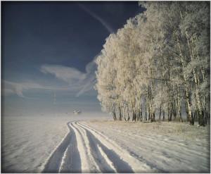 щедрая русская природа